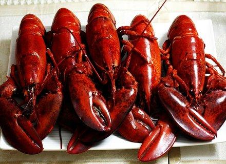 Nova Scotia Lobster Crawl featuring the Great Canadian Lobster Fishing Excursion & Feast