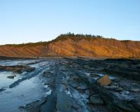 Joggins Fossil Cliffs, Nova Scotia