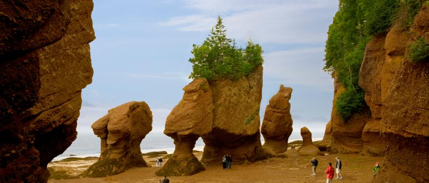Wonders of the Bay of Fundy Self Drive